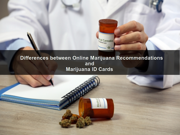 how to get a marijuana card online